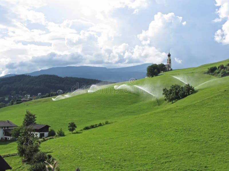 Ridge sur le pâturage alpin avec des arroseuses d'herbe image stock