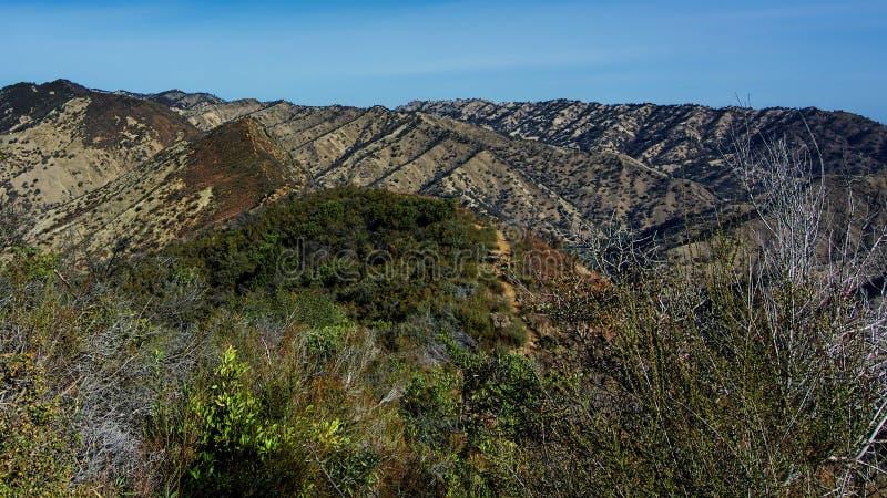 Ridge Trail azul, barranco del frío de Stebbins foto de archivo