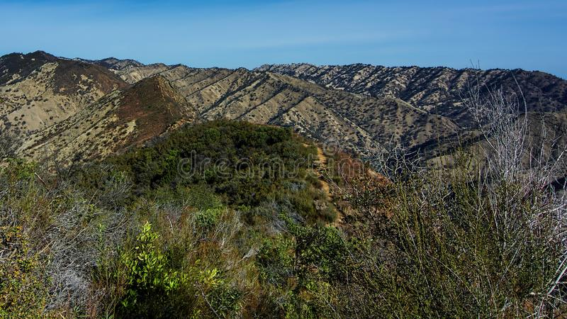 Ridge Trail blu, canyon di freddo di Stebbins fotografia stock