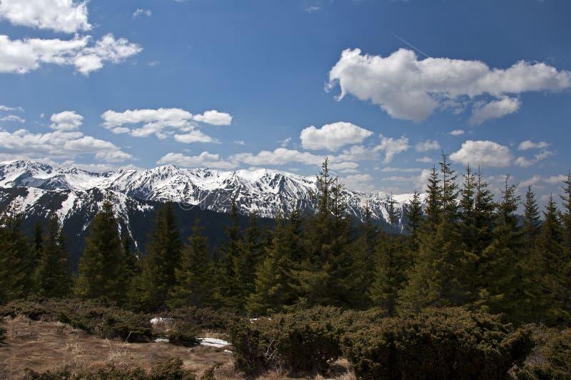 Download The ridge2 stock image. Image of sunny, brasov, snow - 24795047