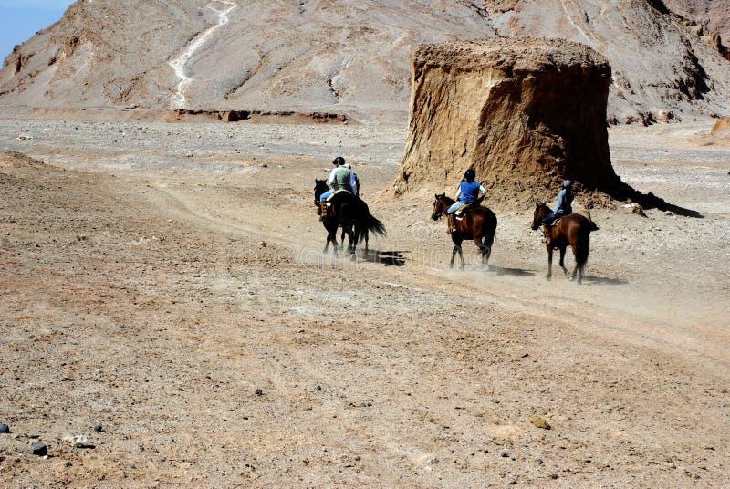riding пустыни Чили atacama стоковое фото