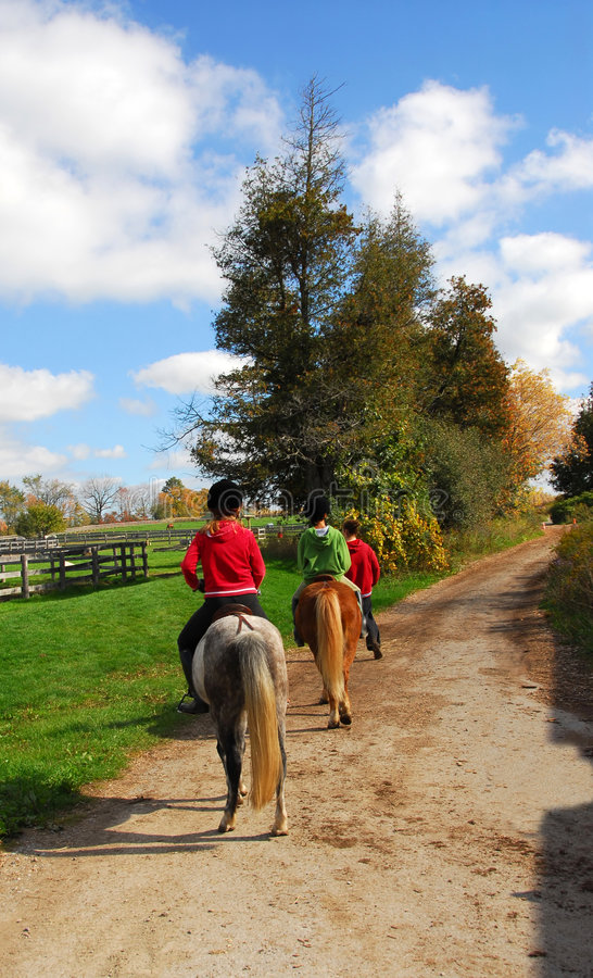 Download Riding stock image. Image of pony, horses, child, nature - 2908609