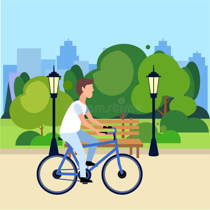Riding bicycle public urban park man cycling wooden bench street lamp green lawn trees on city buildings template. Background flat vector illustration stock illustration