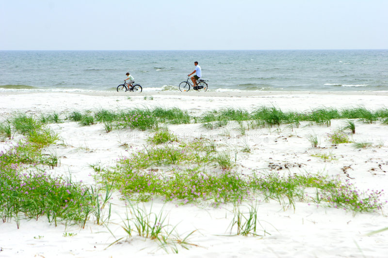 Riding Bikes on the Beach. Father and child on bicycles riding on the beach stock image
