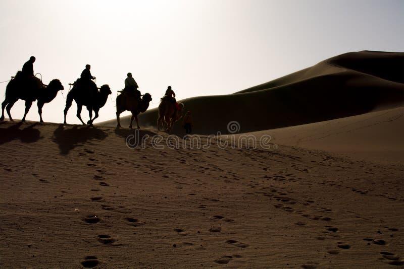 Riding camel royalty free stock photos