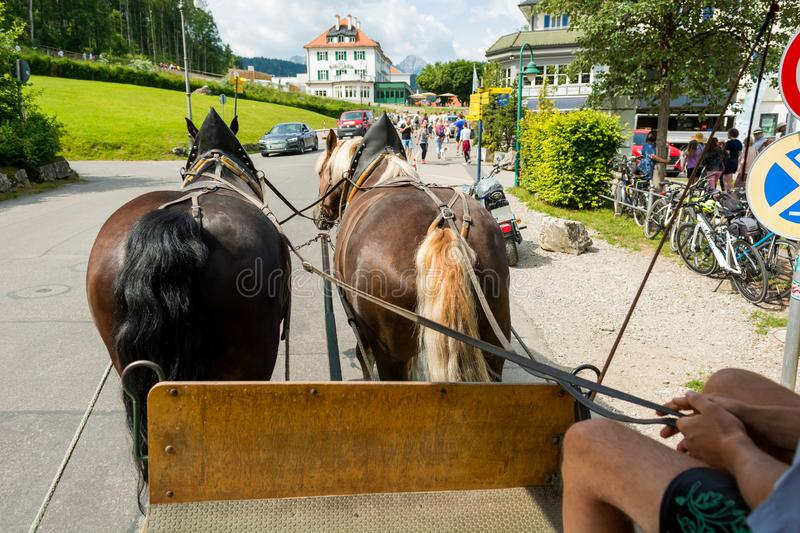 Riding a carriage pulled by a pair of horses. royalty free stock photo