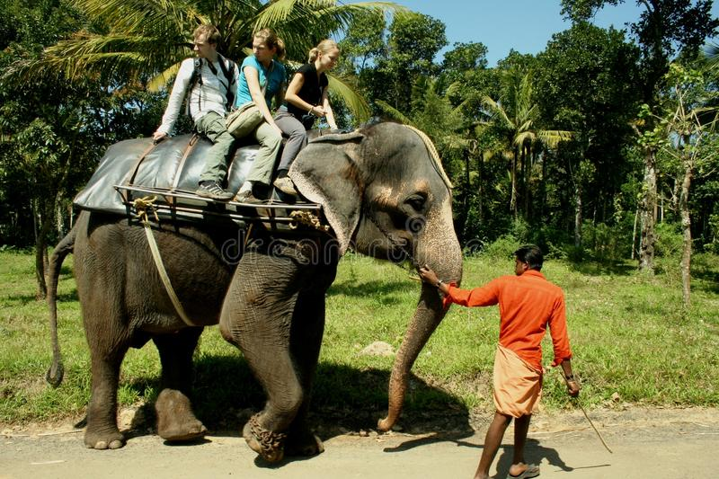 Riding on an elephant stock image