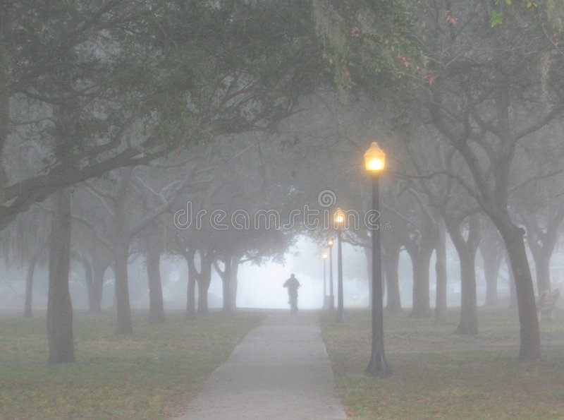 Download Riding Into The Fog stock photo. Image of surreal, clearwater - 3504076