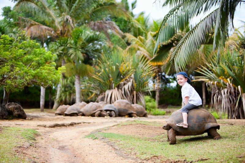 Riding Giant Turtle stock image