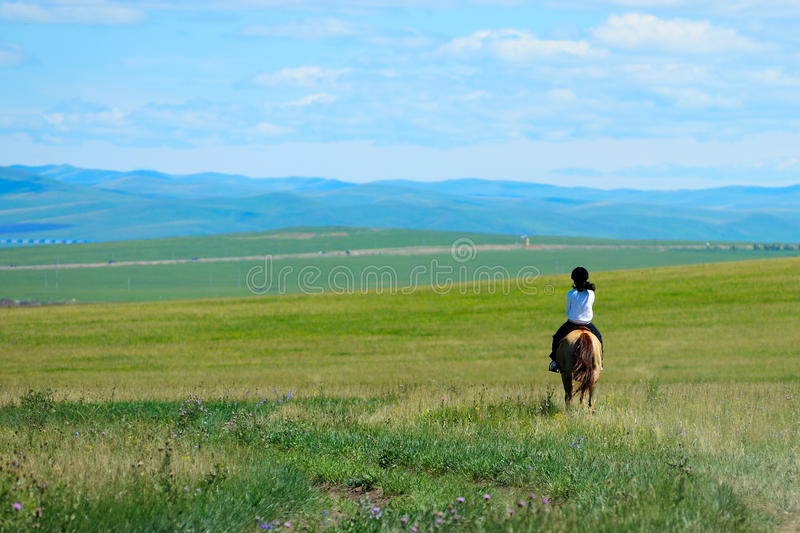 Riding horse in grassland royalty free stock images