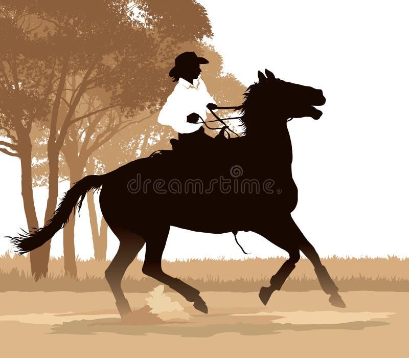 riding horseback девушки бесплатная иллюстрация