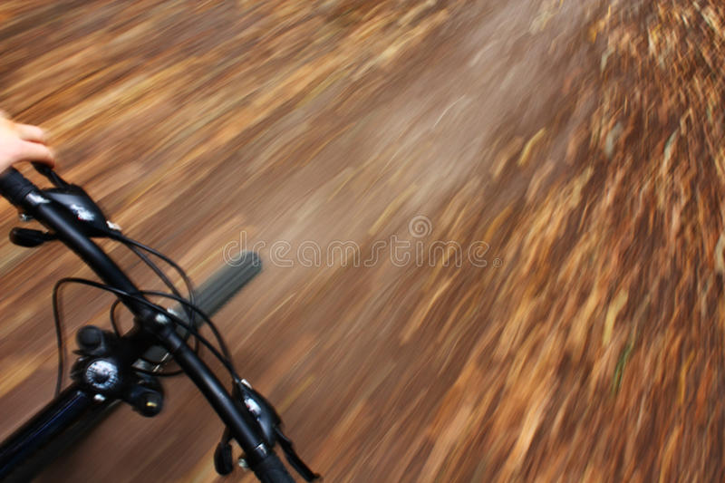 Riding mountain bike in autumn forest royalty free stock photo