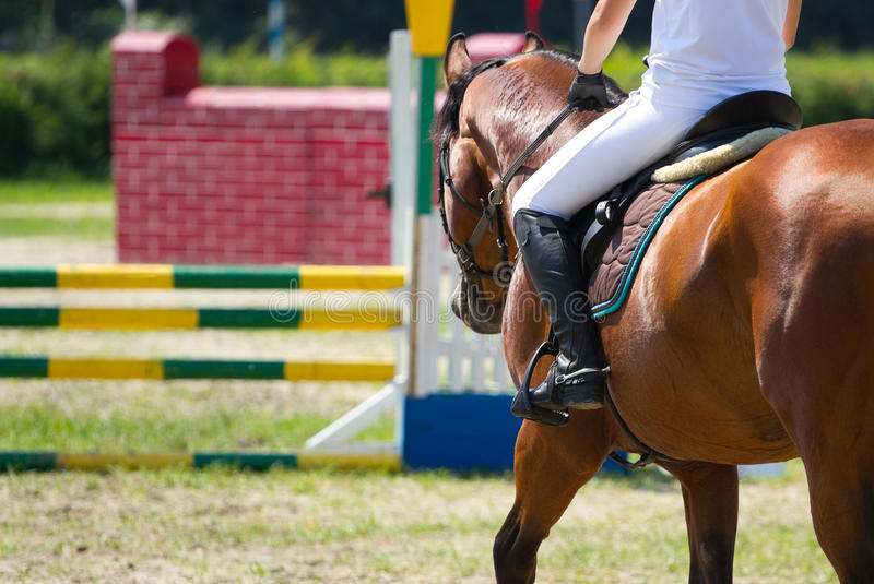 Download Riding sport stock image. Image of professional, leisure - 38328885