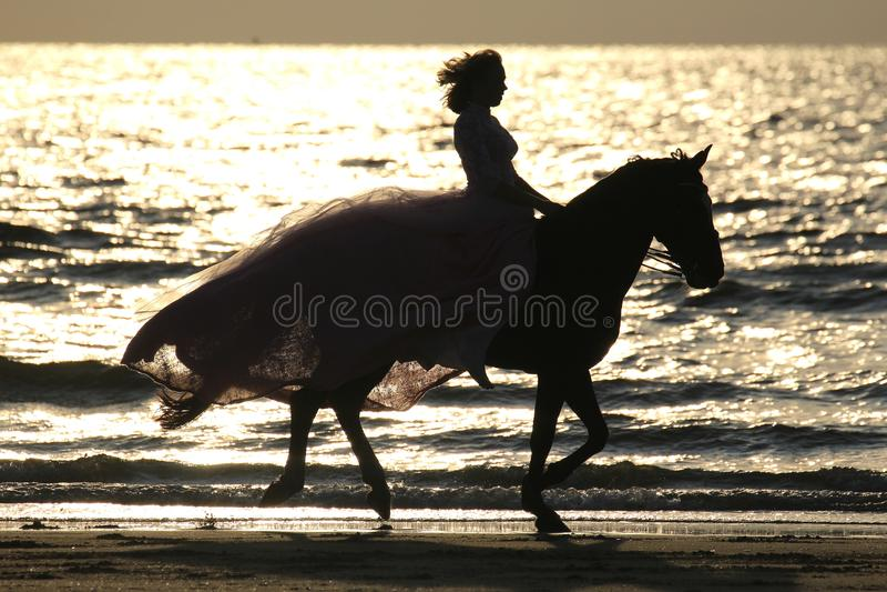 Riding at sunset royalty free stock photos