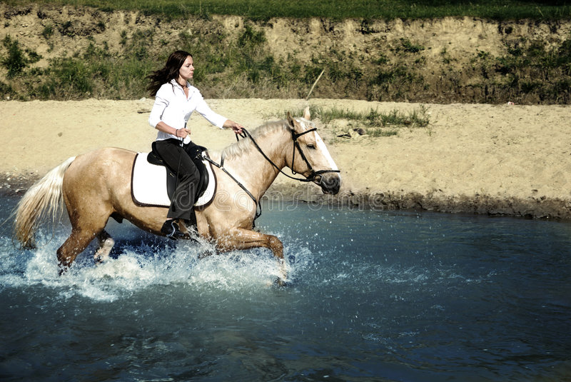 Riding in water. Photo of the woman riding on the horse through the river stock photos