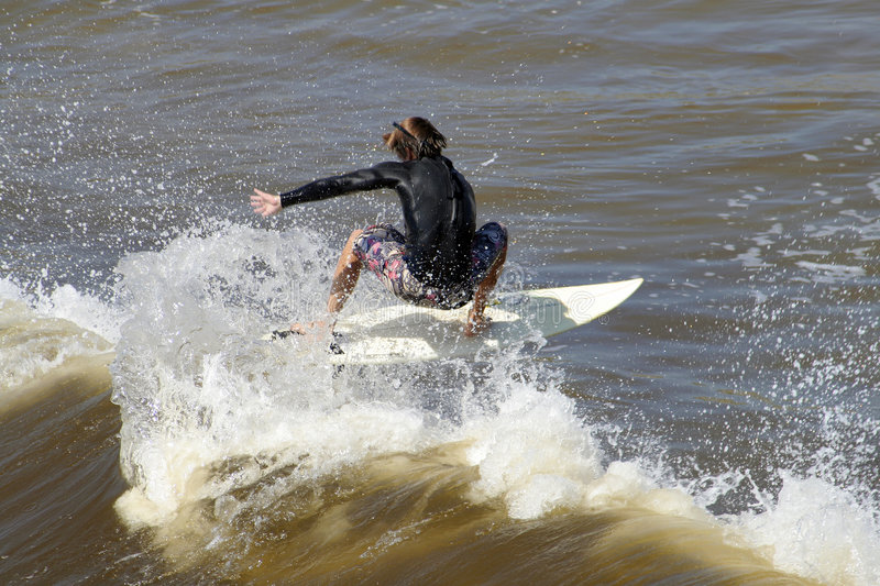 Riding the wave royalty free stock photography