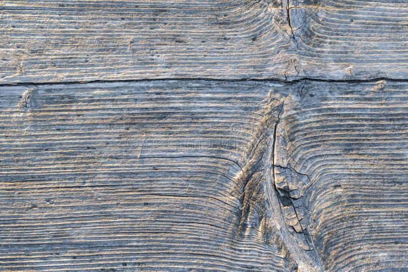 Ridit ut trä med horisontallager och en gnarltexturbackgr arkivbilder