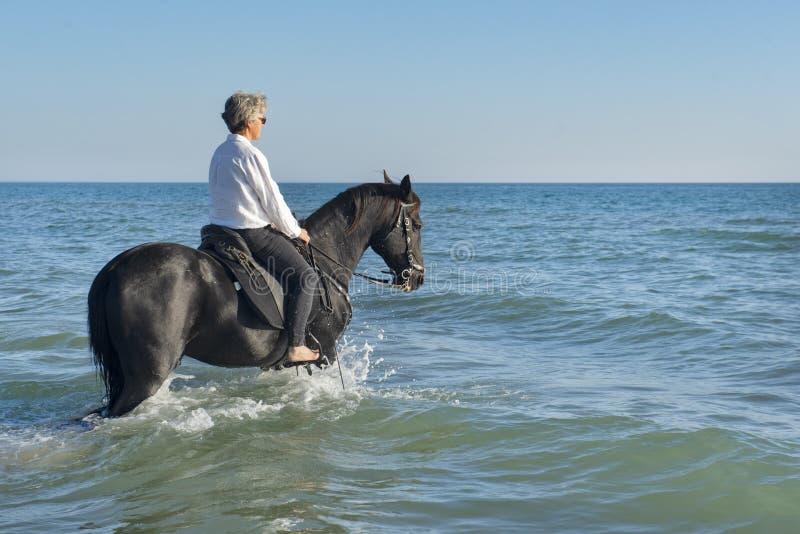 Ridningflicka och häst royaltyfri fotografi