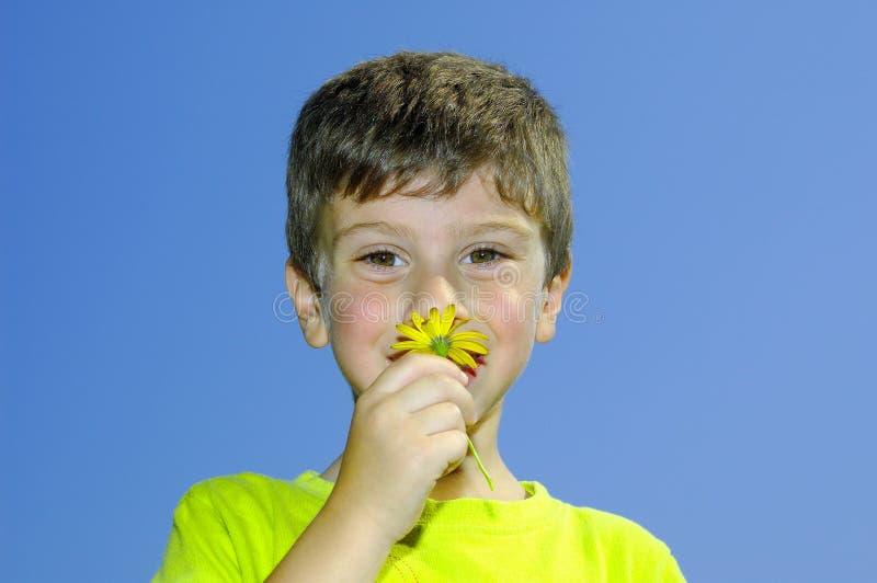 Riechen Sie die Blumen lizenzfreie stockfotos