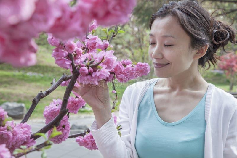 Riechende Blüten der Frau Kirschmit den Augen geschlossen. lizenzfreies stockfoto