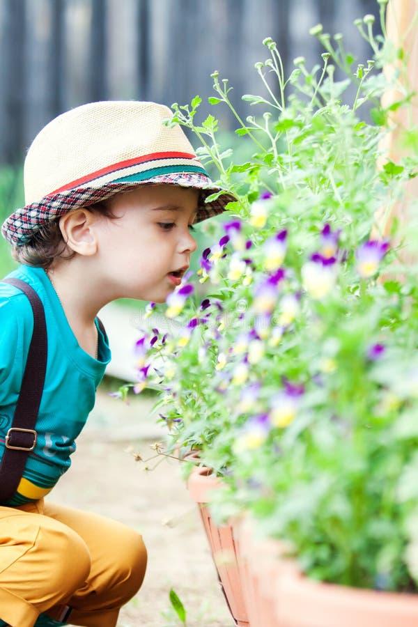 Riechende Blume des Jungen lizenzfreie stockbilder