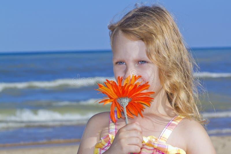 Riechende Blume des Mädchens am Strand stockbilder