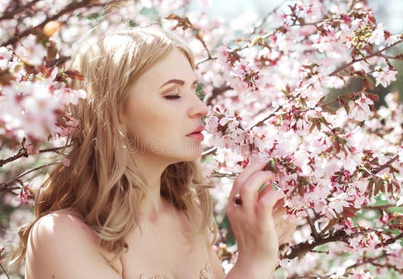 Riechende Blumen der Frau in blühendem Kirschblüte-Garten stockbild
