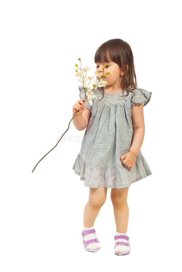 Riechende Orchidee des kleinen Mädchens stockfoto