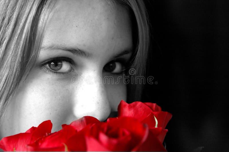 Riechende rote Rosen stockbild