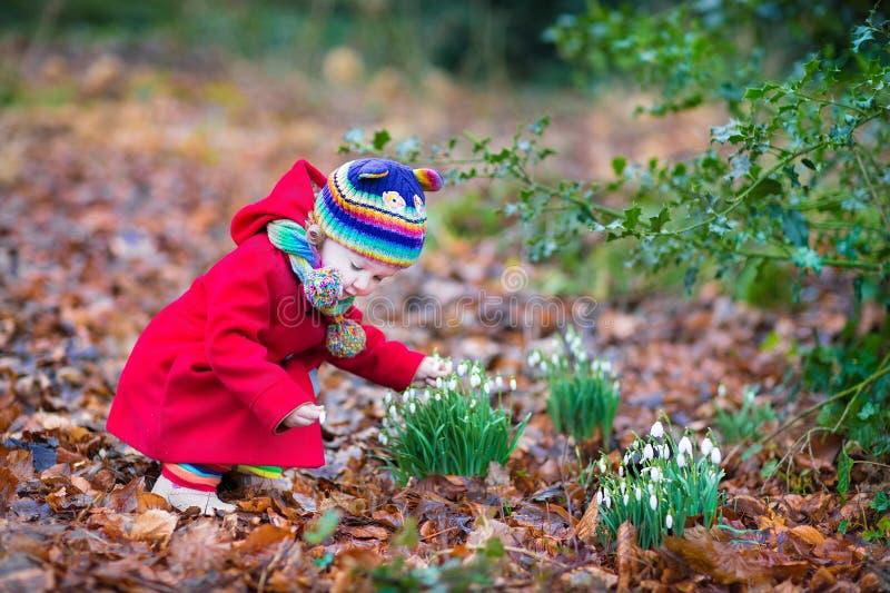Riechende Schneeglöckchenblumen des netten kleinen Kleinkindmädchens lizenzfreie stockfotografie