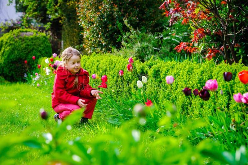 Riechende Tulpen des kleinen Mädchens im Garten lizenzfreies stockfoto