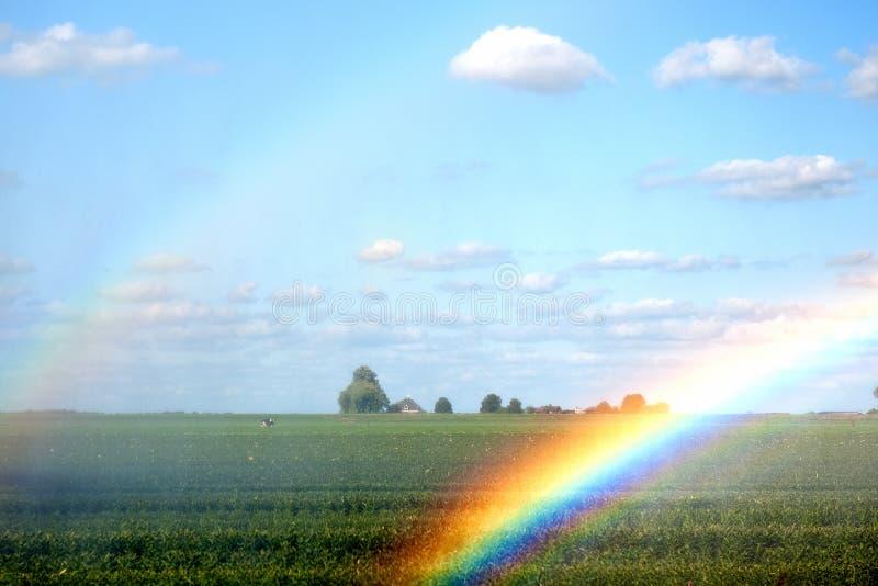 Riego de los campos de la agricultura foto de archivo libre de regalías