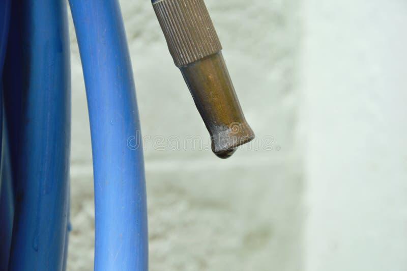 Riegue el descenso de la boca del hierro y del tubo de goma azul rodante en jardín del patio trasero imágenes de archivo libres de regalías