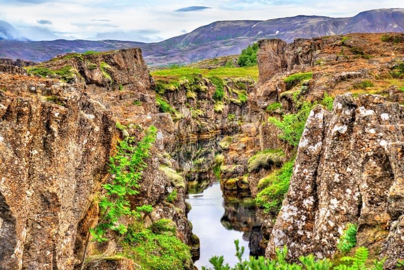 Riegue en una grieta entre las placas tectónicas en el parque nacional de Thingvellir, Islandia fotografía de archivo