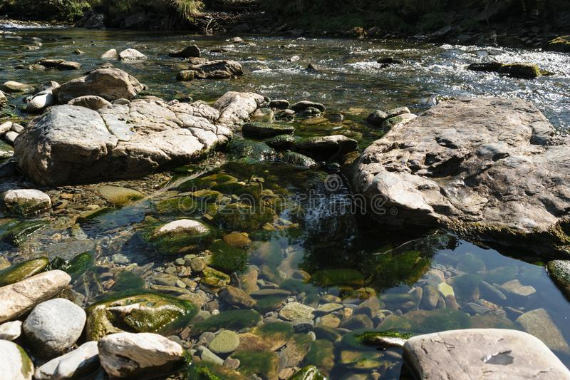 Riegue la cala que atraviesa rocas y el charco que muestra las rocas cubiertas en algas verdes foto de archivo