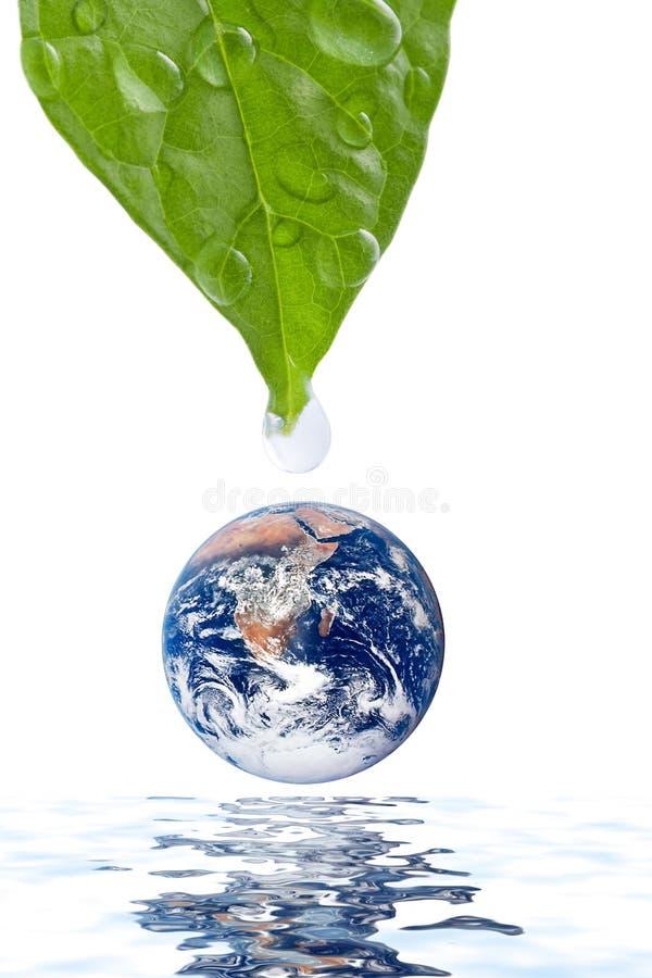 Riegue la gota que baja sobre el planeta de la tierra aislado fotografía de archivo