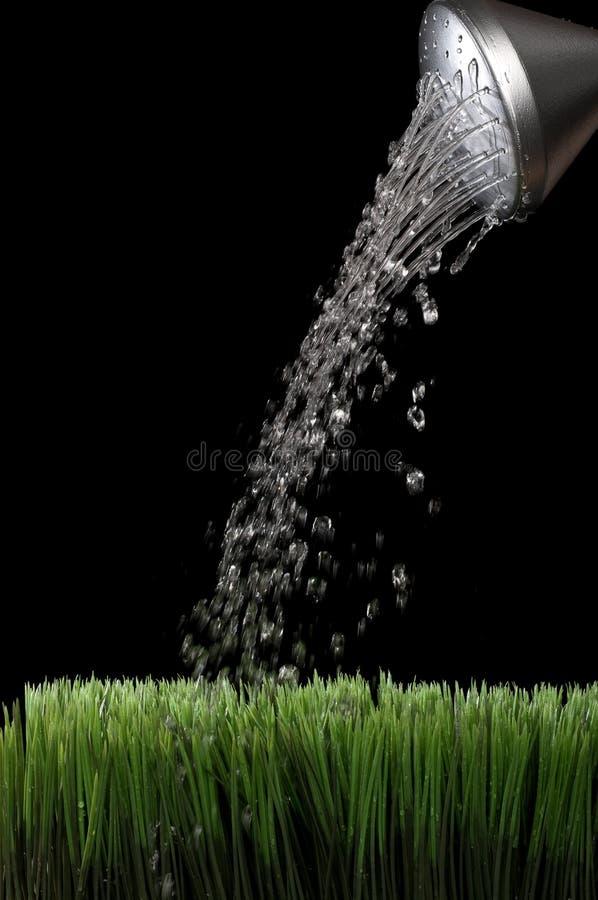 Riegue sprinking de una poder de riego de plata del jardín fotografía de archivo