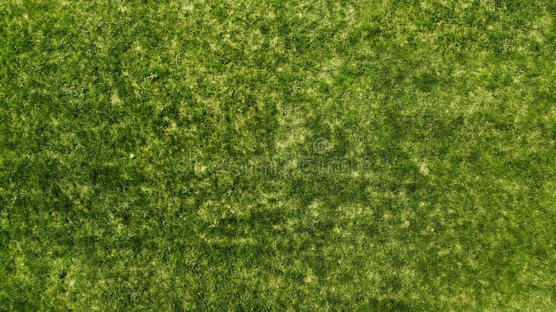 a?rien Fond de texture d'herbe verte Gazon naturel images stock