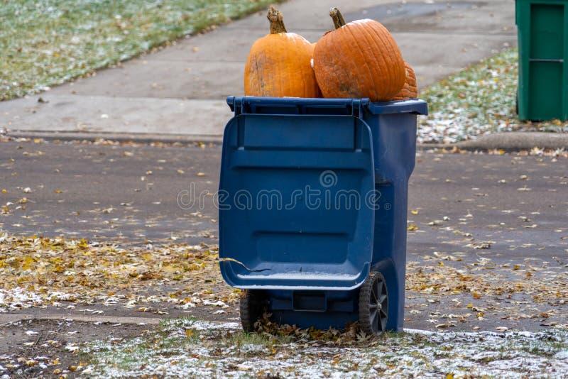 Riesenkürbisse, die in einer Abfallmüllcontainerwarteabfallaufnahme am Curbside sitzen lizenzfreie stockbilder