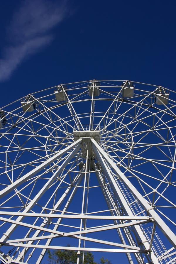 Riesenrad herein den Park lizenzfreies stockbild