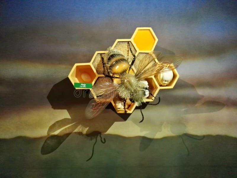 Riesige Biene in seiner Bienenstockskulptur im Park Jaime Duque vektor abbildung