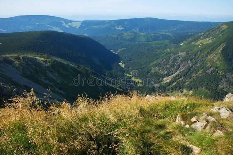Riesige Gebirgssommerlandschaft, Snezka-Hügel, Tschechische Republik lizenzfreies stockbild
