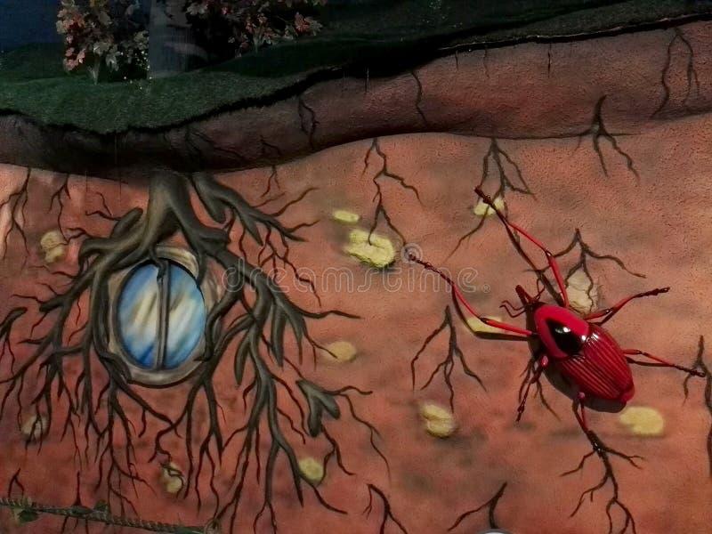 Riesiger roter Käfer mit schwarzem Fleck auf der hinteren Skulptur im Park Jaime Duque stock abbildung