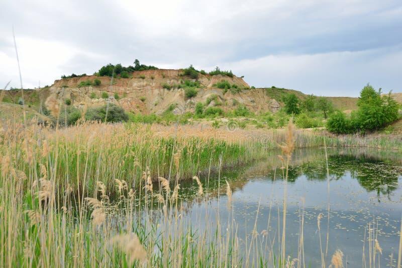 Riet en porseleinaardeheuvel bij het Blauwe Lagunemeer stock fotografie