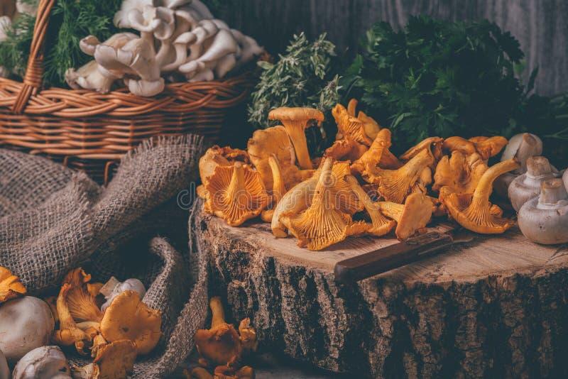 Rieten dienblad met cantharelpaddestoelen op houten lijst Mes, mand met paddestoelen en verse kruiden stock foto