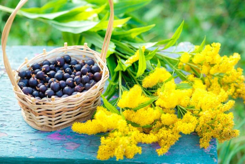 Rieten mand met kruisbes en gele bloemen royalty-vrije stock foto