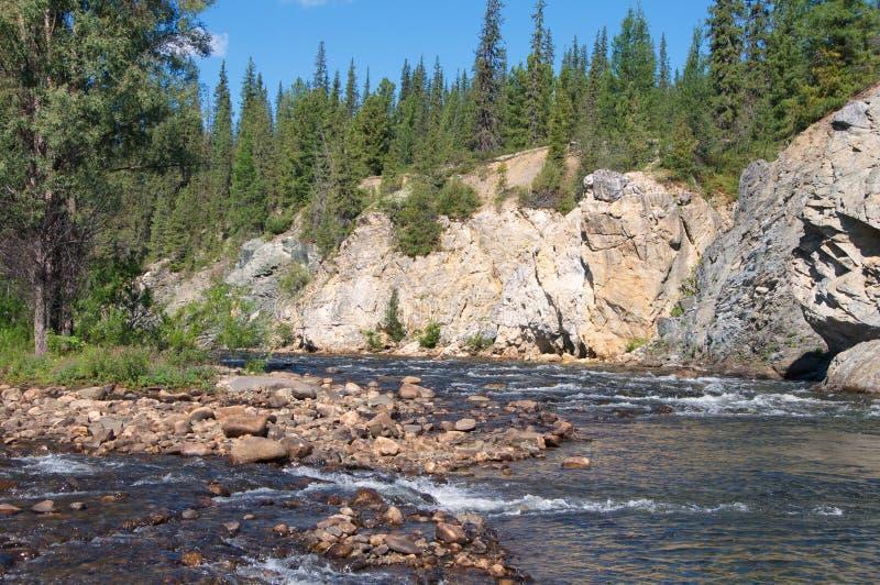 Riffle på bergfloden arkivbilder
