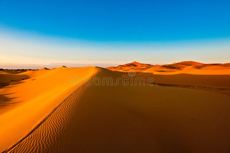 Orange dune ridge with riffles in the desert of Sahara, Morocco. Riffles from wind on orange dune In the vastness of the Moroccan Sahara
