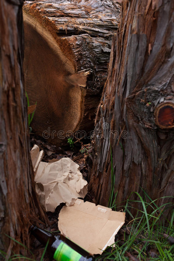 Rifiuti in alberi immagini stock