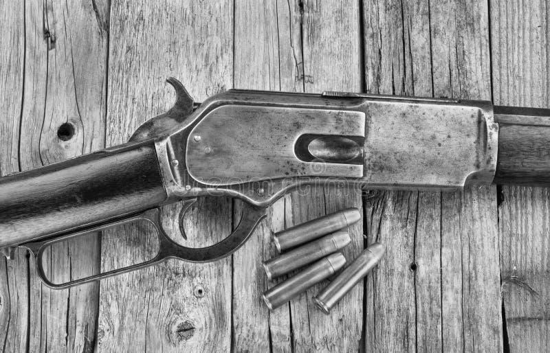 Rifle 1876 de la antigüedad foto de archivo libre de regalías